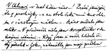 Nase Rec Dve Ruzne Podoby B Nemcove V Jejich Dopisech Zenam